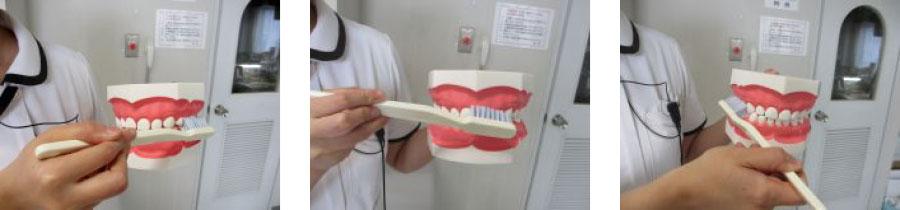 歯の磨き方_01