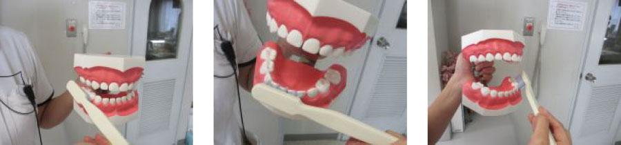 歯の磨き方_02