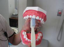 歯の磨き方_04